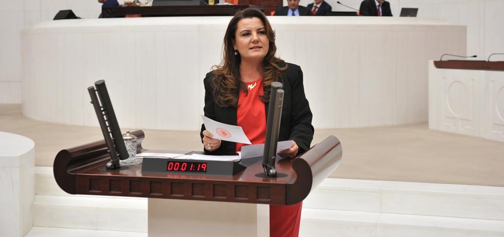 Hürriyet, Dilovası ve İzmit'i Sağlık Bakanına sordu