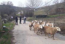 İzmit Belediyesi kırsal kalkınma için köylerde