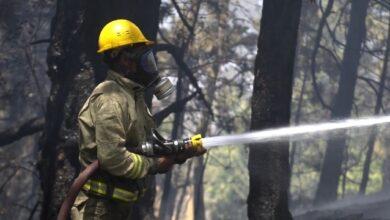 Ünlülerden orman yangınları için çağrı