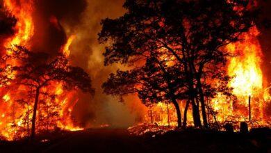 İtfaiye'den orman yangını uyarısı