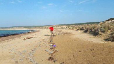 Kuzek Kıbrıs sahilleri S.O.S. veriyor
